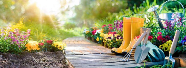 flowers blooming on both sides of a path through a garden, garden tools, watering can and boots on the right hand side of the path