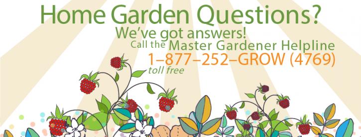 Master Gardener Hotline 1-877-252-4769